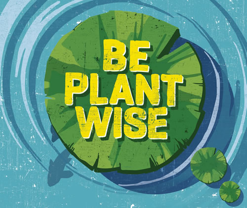 be plantwise